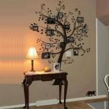درخت خاطره ها